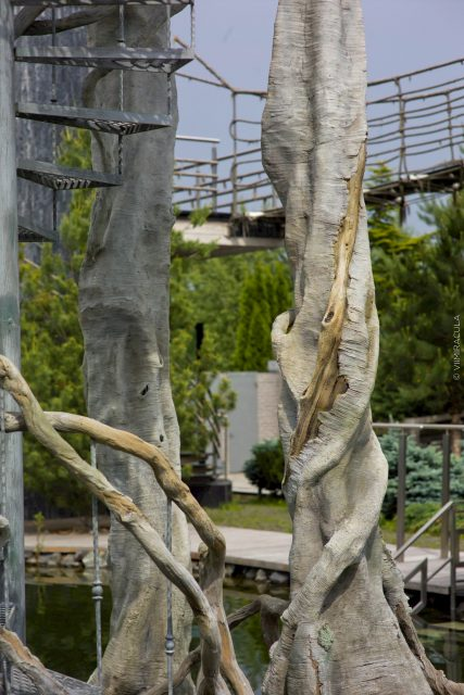 Фото скульптуры дерева