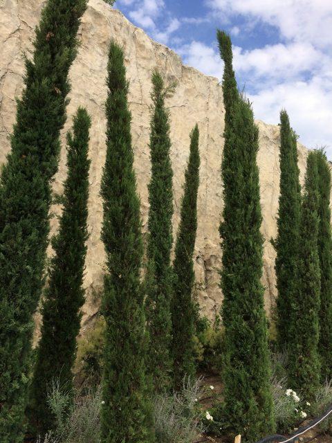 Сооружение скалистой стены