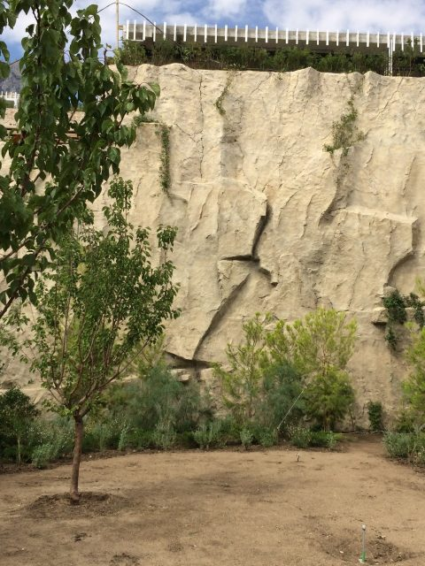 Каменистый ландшафт из искусственного бетона