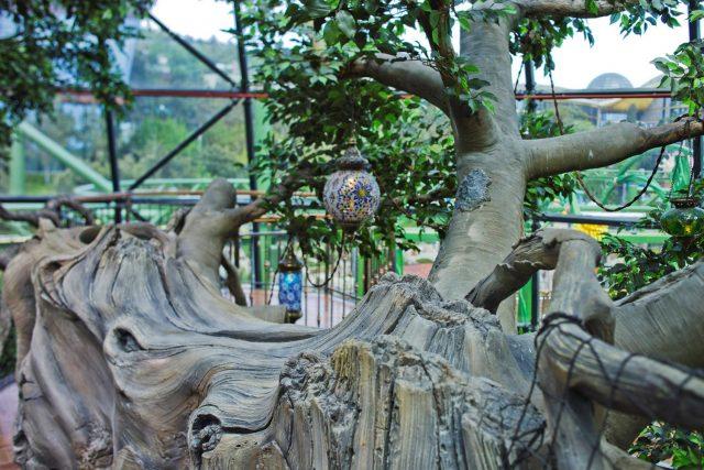Искусственные деревья из бетона