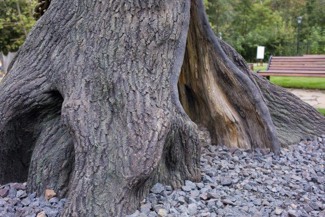 Имитация коры и древесины бетоном