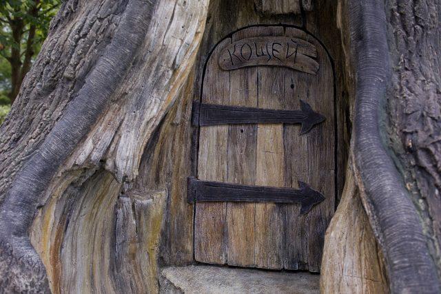 Элементы дизайна с имитацией древесной структуры